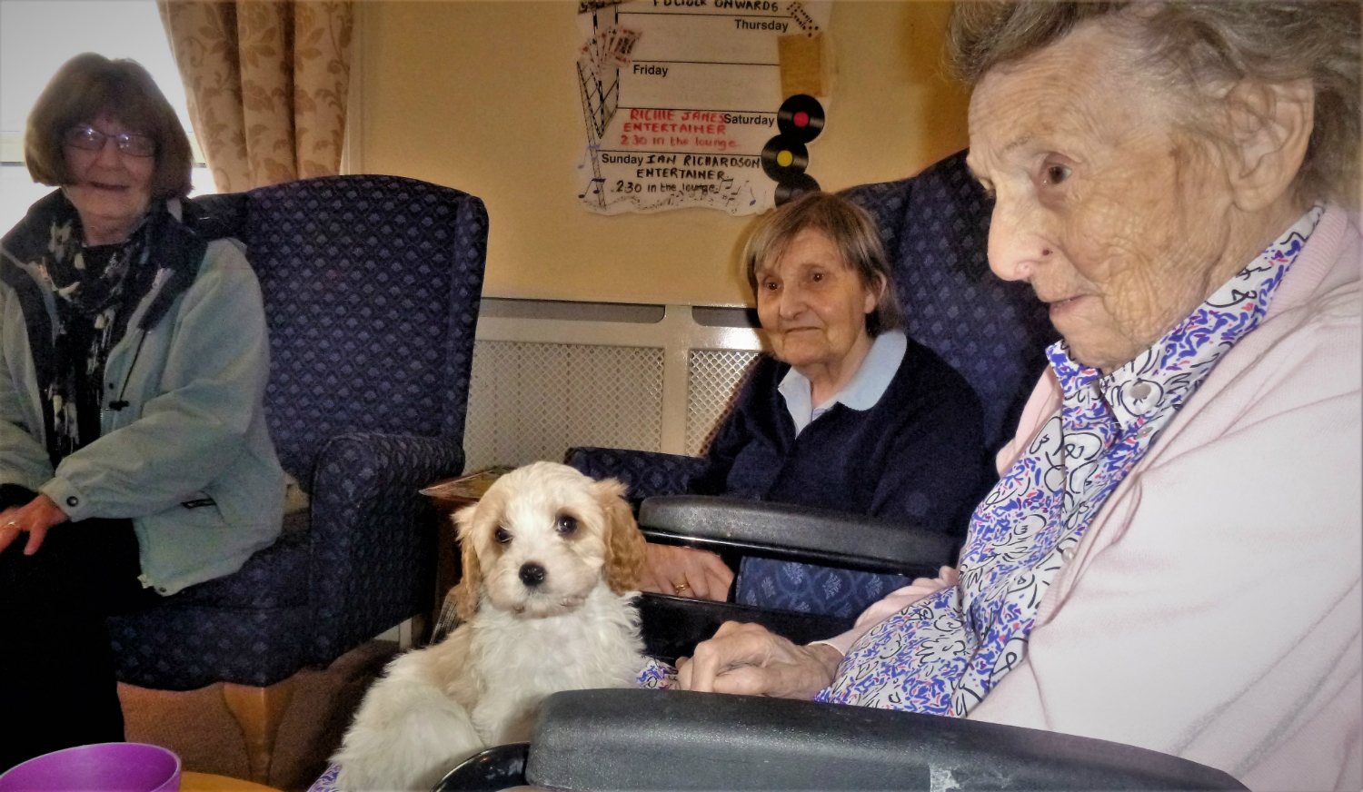 Furry Friend Visits The Firs Residential Home in Devon